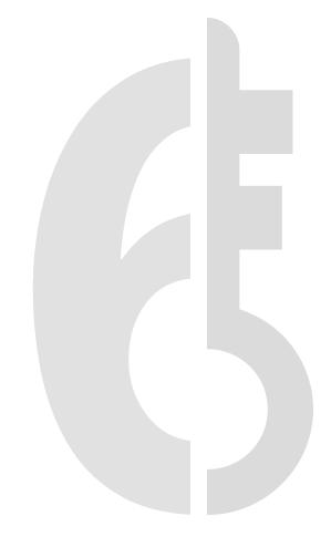 snbvi-6 points cles